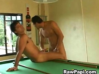 Horny latino gay guys ass fucking on the pool table