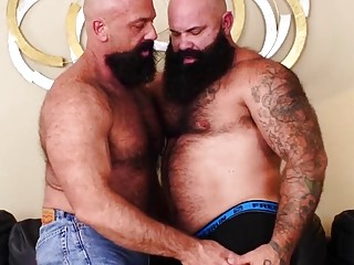 Hot gay bears with beards raunchy fuck