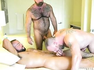Husky bears jerking towards orgasm